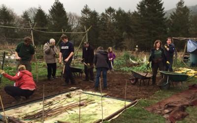 Llys y Goedwig member blog – Beaufort report on five star social forestry training